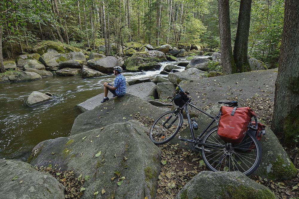 Boehmer-Wald-Fahrrad.jpg